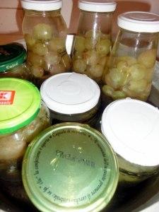 pofta-buna-gina-bradea-compot-natural-de-struguri-fara-conservanti.jpg (3)