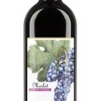 Merlot Wine Labels