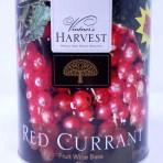 Red Currant Vintner's Harvest Fruit Base