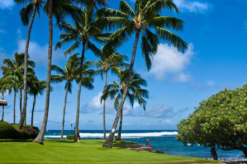 Angel Falls Wallpaper Hd Lawai Beach Kauai Poipu Beach Resort Association
