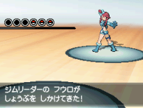 5. Skyla Battle Gym Leaders