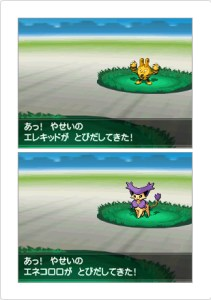 white 2 pokemon 211x300 Version Differences