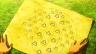 【ポケモンGO】天才現る『P-GO無しで確実にレアポケモン発見できる作戦に協力してくれ』