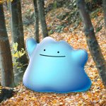 new-ditto-code