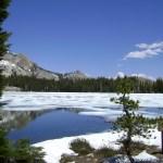May lake. Хайкинг в Йосемити, Тайога-роуд