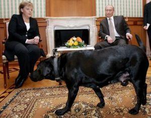 Germania? Germania! Putin-merkel