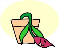 deadflower.jpg