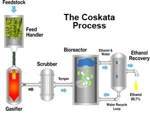 coskata-chart