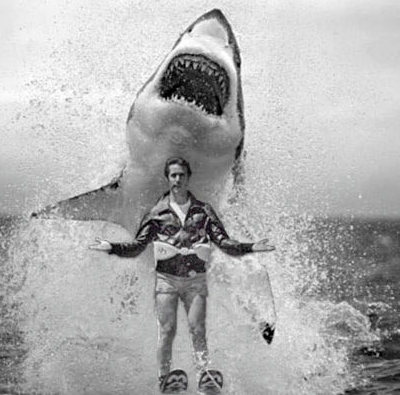 jump-shark