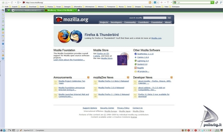 pollosky_firefox_200903