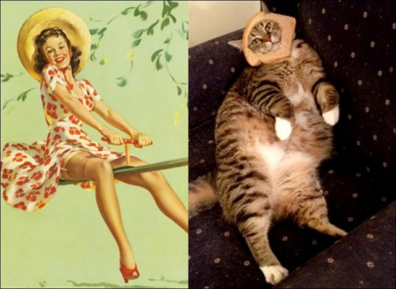 cats-pinup-girls-004