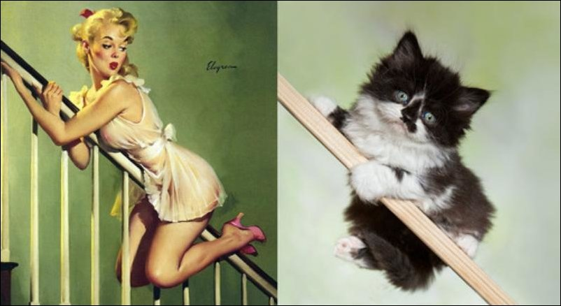 cats-pinup-girls-026