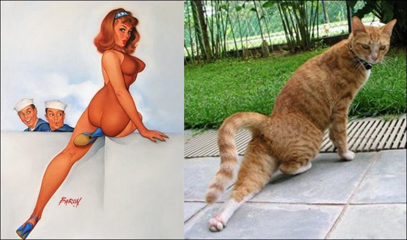 cats-pinup-girls-035