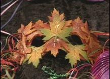 leafmask.jpg