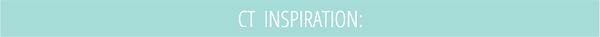 ponytails_blog ct inspiration