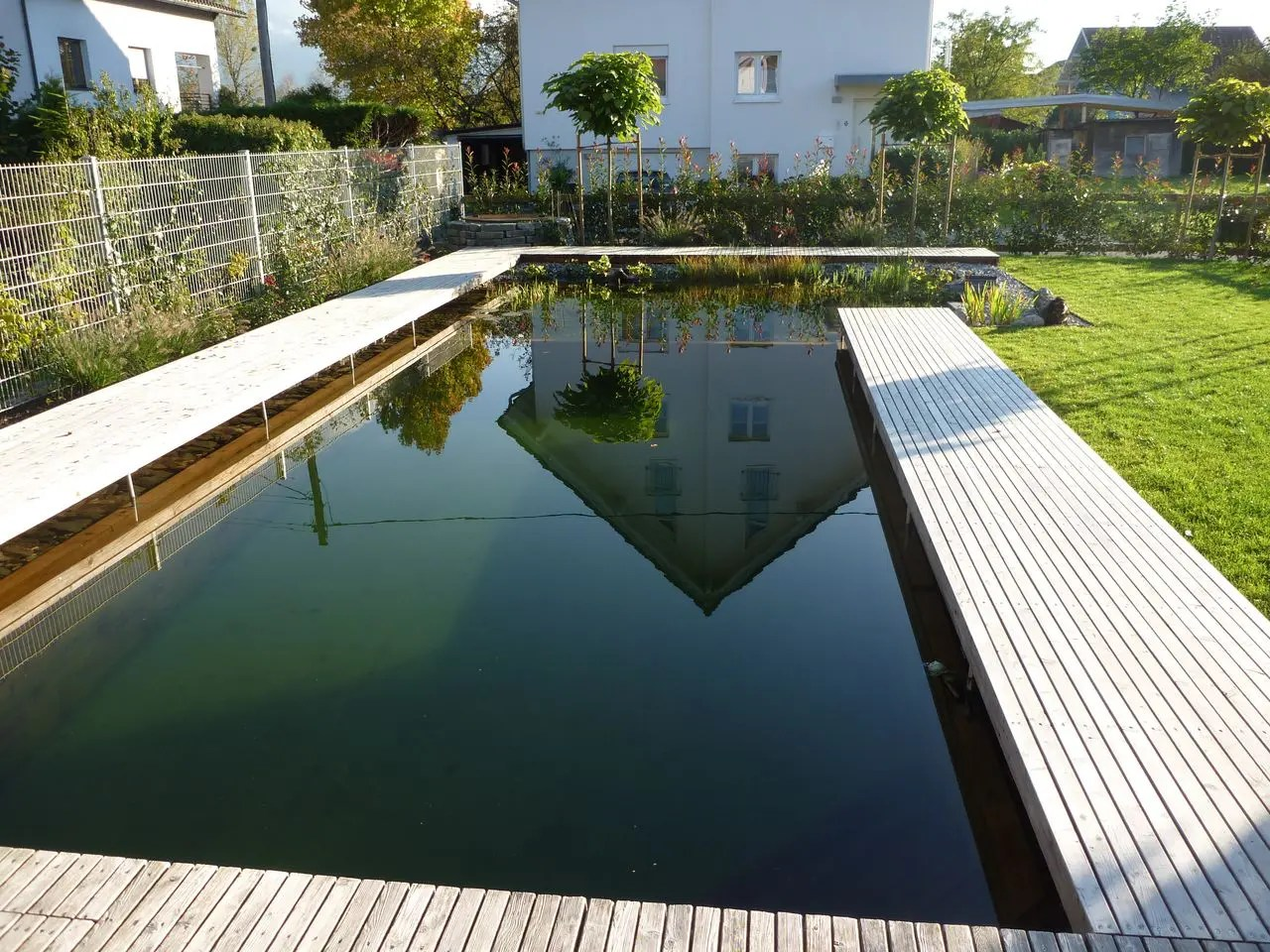 Pool Garten Algen Alge Gartenbau Pool For Nature