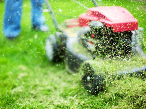 How To Pick The Right Mower For Your Lawn