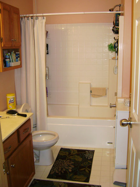 Best Bathroom Remodel Ideas, Tips \ How Tou0027s - bathroom remodel pictures ideas
