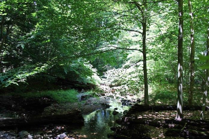 Patapsco Hike