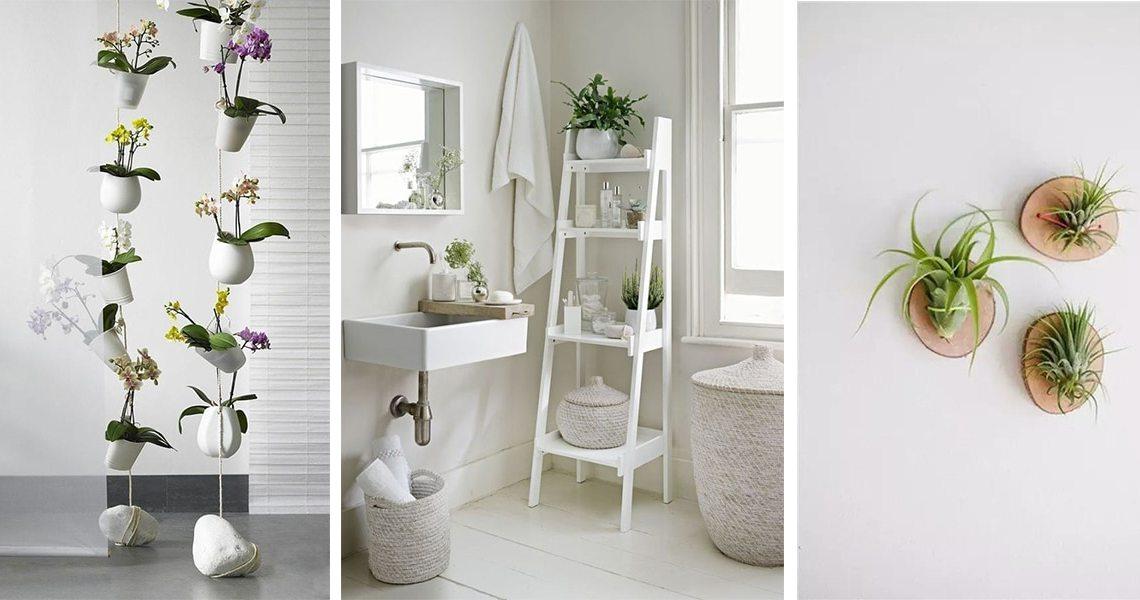 como-decorar-con-plantas-destacada