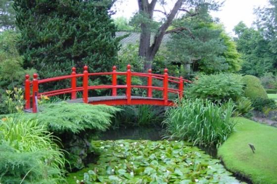 Znalezione obrazy dla zapytania kwiaty ogrodów w chinach
