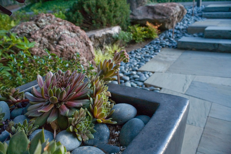 12 Inspiring Ideas for a Lawn-Free Landscape - Porch Advice