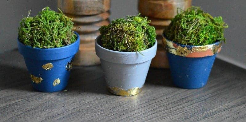 The kids will love making these DIY Gold Leaf Plant Pots!