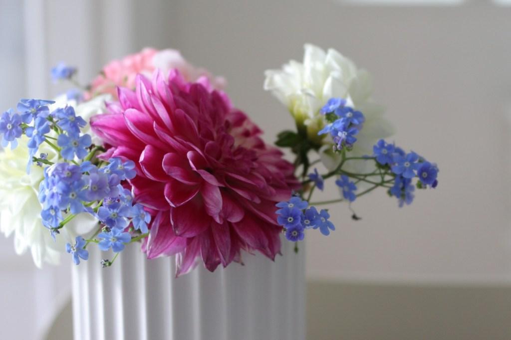 flowers-1049208_1280
