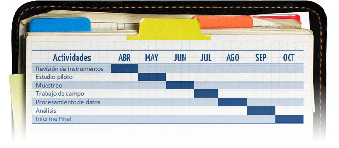 Cronograma Portal Académico del CCH