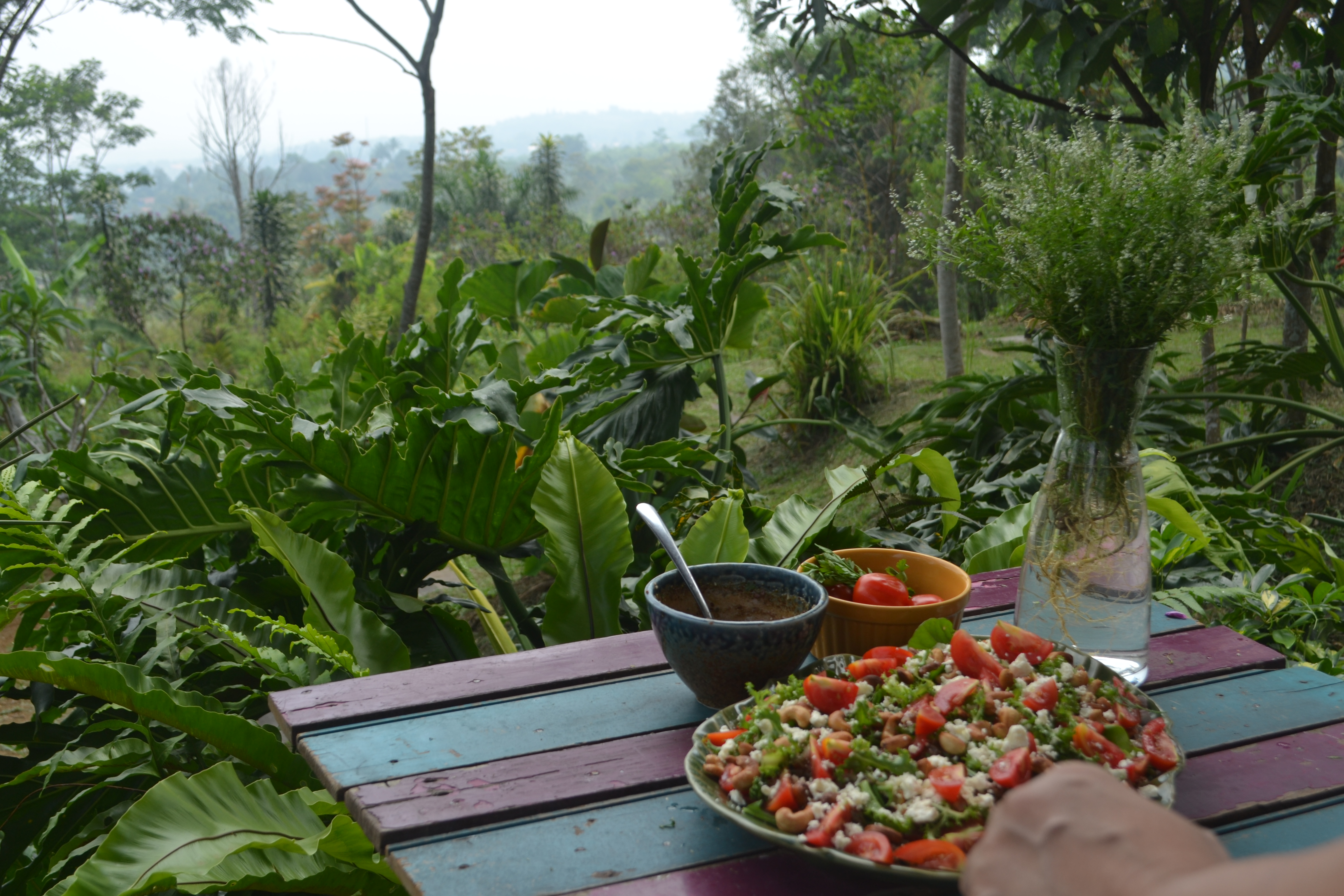 Eating surrounded by nature, what's better than that ?