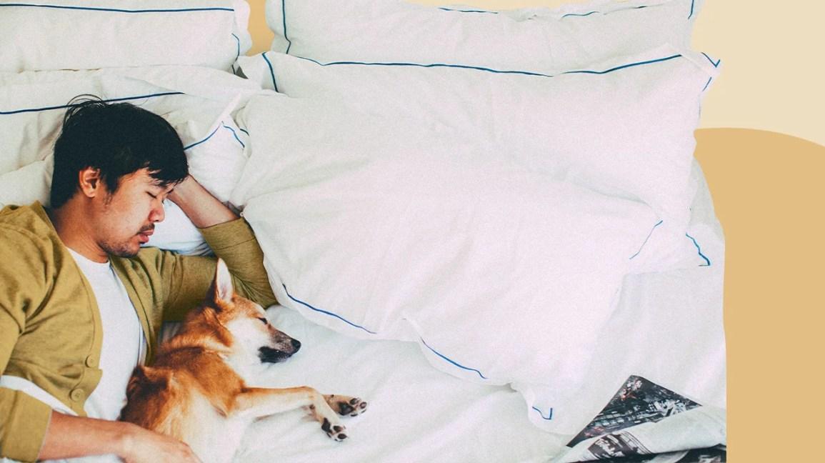 Man sleeping next to a dog