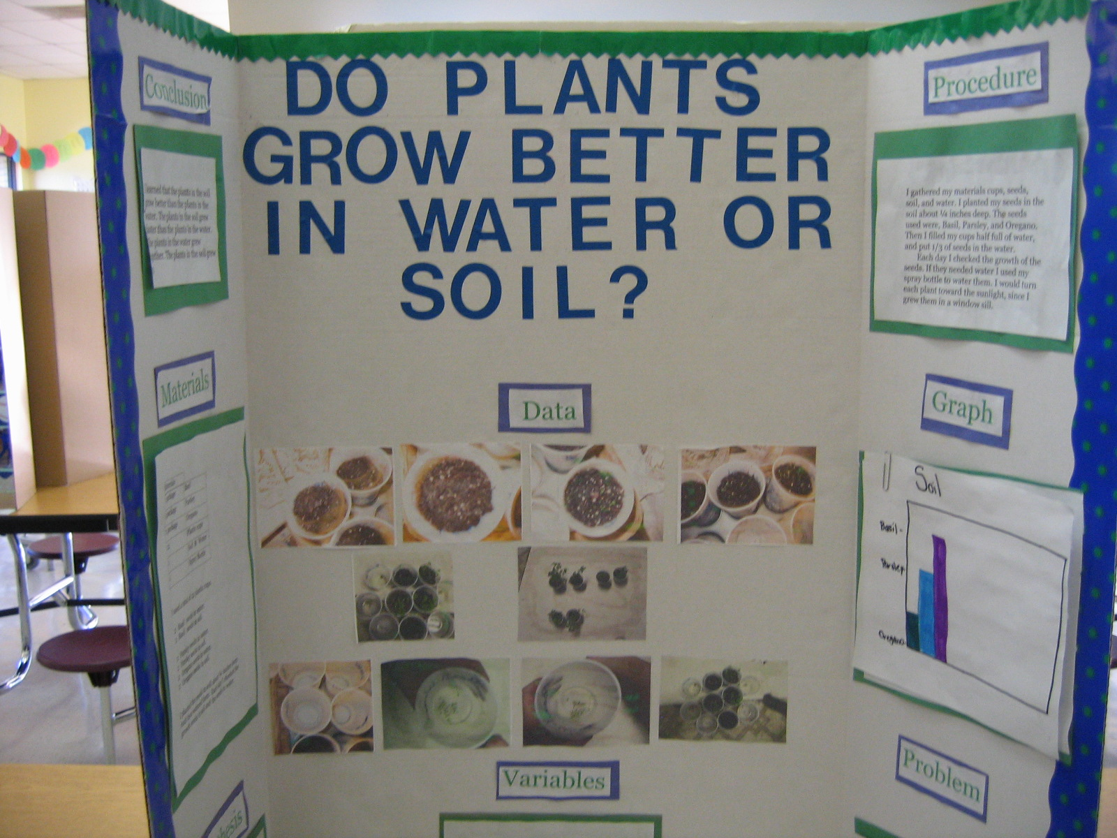 botany science fair projects A collection of experiments and projects in botany which explore germination, photosynthesis, and reproduction.