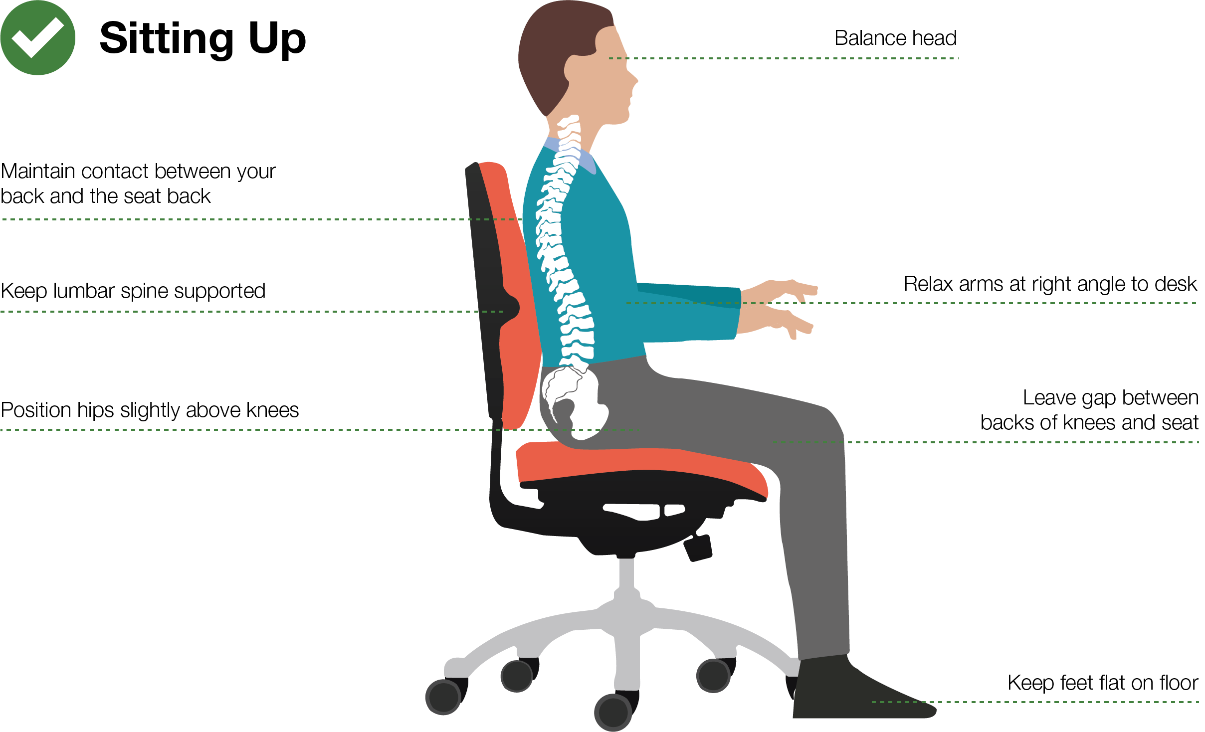 Good Posture Office Chair Art Of Sitting Posturite