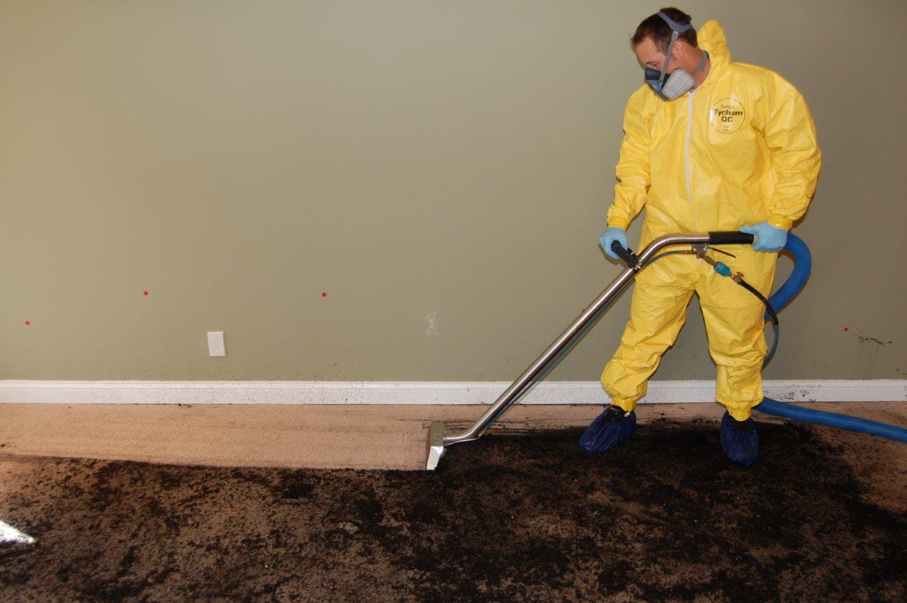 Sewage Cleaner Sewage Cleanup Services Power Dry Lenexa Kansas