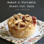 steel cut oat minis 1