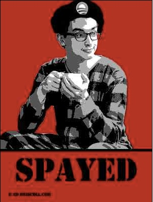 Spayed Pajama Boy copy