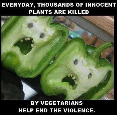 Vegetarians copy