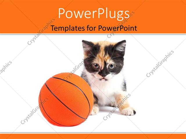 PowerPoint Template a cat with a basketball and white background - basketball powerpoint template