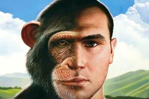 chimp-man