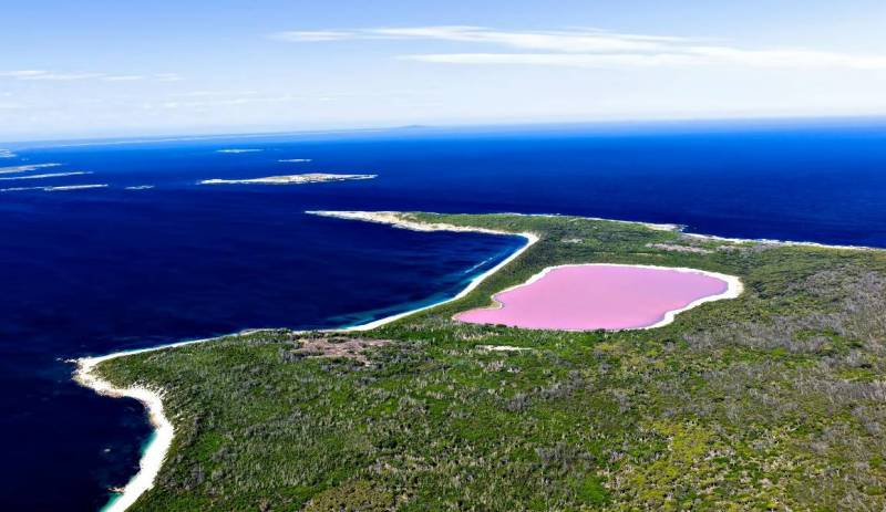 Розовое озеро Австралия