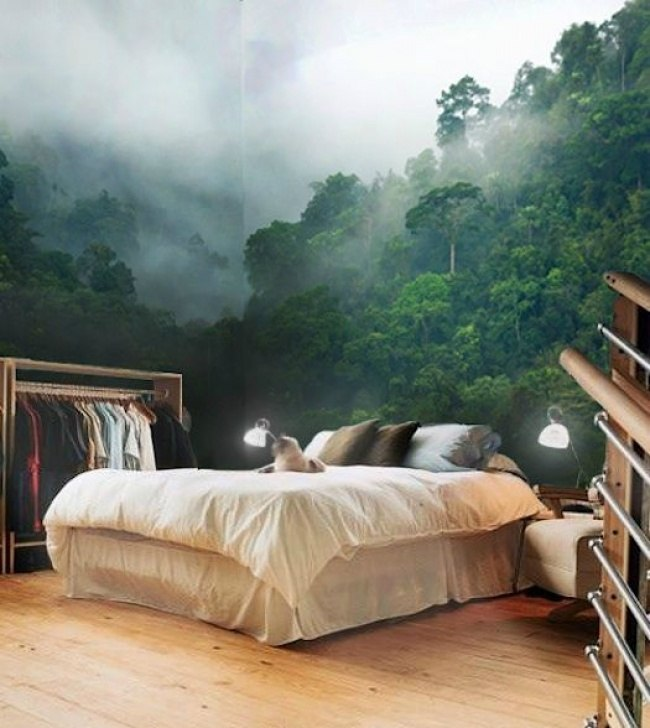 Sun shining through the Forest Wall Mural Bedroom! So realistic! So