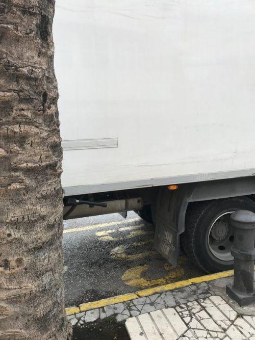 Camión sobre parada de bus