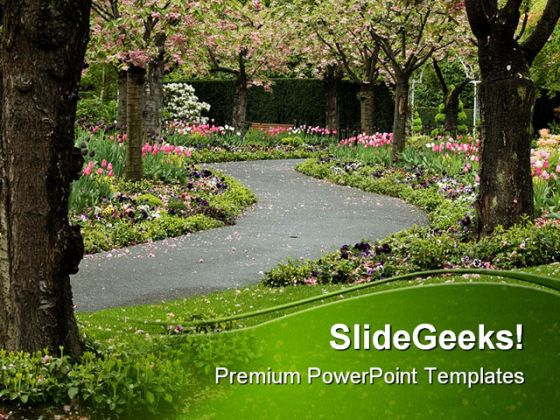 blossom_path_nature_powerpoint_template_1010_1jpg