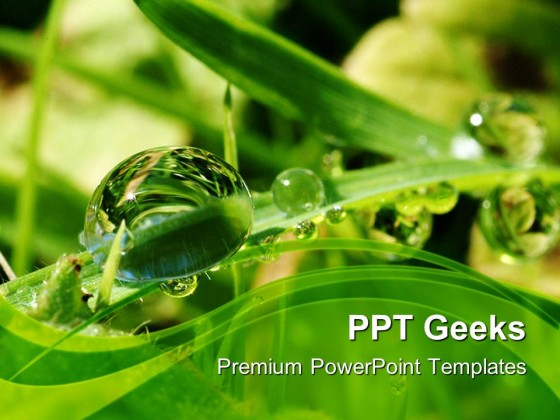 Dew Drops On Leaves Nature PowerPoint Templates And PowerPoint