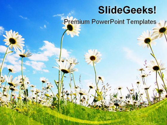 Flowers In Summer Nature PowerPoint Backgrounds And Templates - nature powerpoint