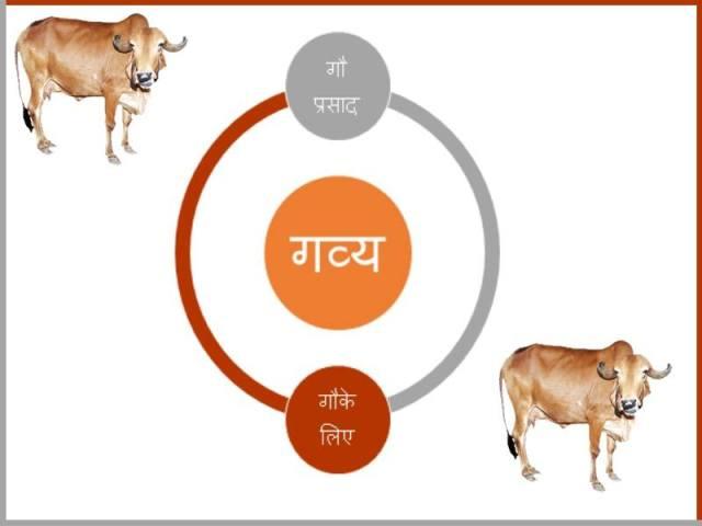 गाय & गव्य