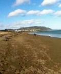 easy scrapbooking - A man walking along a quiet beach