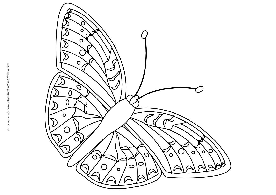 bignan schema moteur monophase wikipedia