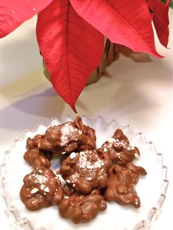 poinset-peanut-clusters2