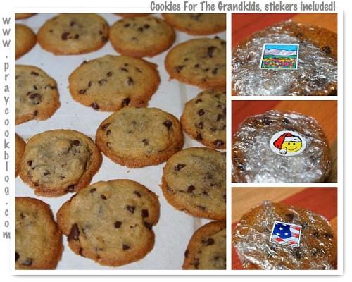 mosaicchocchipcookies